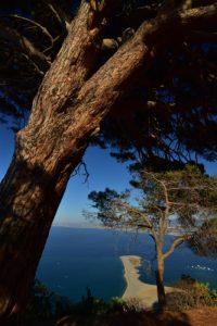 Le site archéologique de Tyndaris<br> Île de La Sicile