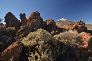 Le Teide depuis le sentier de La Fortaleza<br> Parc national du Teide<br> Île de Tenerife (Islas Canarias)
