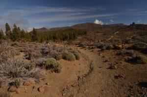 Las Canadas del Teide sur le sentier de La Fortaleza<br> Parc national du Teide<br> Île de Tenerife (Islas Canarias)