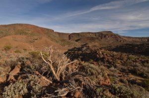 Las Canadas del Teide<br> Parc national du Teide<br> Île de Tenerife (Islas Canarias)