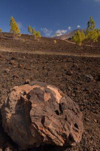 Bombe de lave sur le sentier de las Montanas Samara &amp; Reventada<br> Parc national du Teide<br> Île de Tenerife (Islas Canarias)