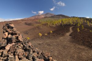 Volcans Teide, Pico viejo &amp; Revendata depuis la Montana Samara<br> Parc national du Teide<br> Île de Tenerife (Islas Canarias)