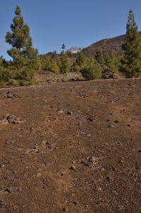 Volcan Teide depuis le sentier de las Montanas Samara &amp; Reventada<br> Parc national du Teide<br> Île de Tenerife (Islas Canarias)