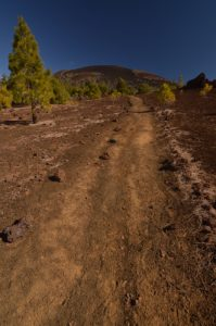Le volcan Revendata depuis le sentier de las Montanas Samara &amp; Reventada<br> Parc national du Teide<br> Île de Tenerife (Islas Canarias)