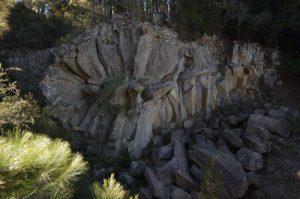 Margarita de piedra<br> Parc national du Teide<br> Île de Tenerife (Islas Canarias)
