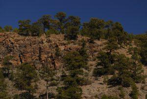 Paysages lunaires et cheminées de fées sur le site de Paysaje Lunar<br> Île de Tenerife (Islas Canarias)