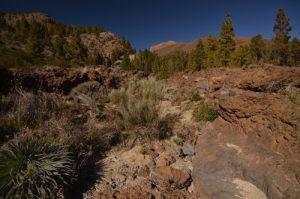 La crête de Las Canadas del Teide depuis le sentier de Paysaje Lunar<br> Île de Tenerife (Islas Canarias)