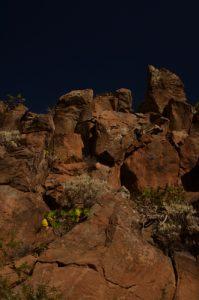 Roche volcanique sur le sentier de Paysaje Lunar<br> Île de Tenerife (Islas Canarias)