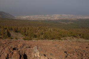 Point de vue sur Puerto de la Cruz depuis le sentier de Montana Guamasa<br> Parc national du Teide<br> Île de Tenerife (Islas Canarias)