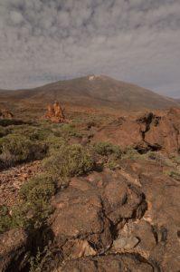 Le volcan Teide (3718m) &amp; formes anthropomorphes résultat de l'érosion de vieilles cheminées et coulées de lave de Los Roques de Garcia<br> Parc national du Teide<br> Île de Tenerife (Islas Canarias)