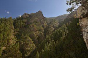 Le sentier de la vallée de la Orotava<br> Île de Tenerife (Islas Canarias)