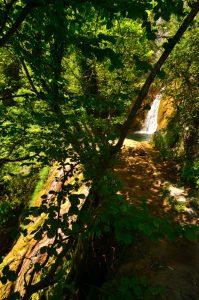 Cascade de Tuf du Verraillon<br> Parc Naturel Régional des Préalpes d'Azur