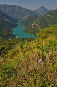 Le Lac de Castillon<br> Parc Régional du Verdon