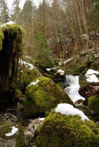 La Cascade de Saint-Nicolas<br> Parc naturel régional des Ballons des Vosges