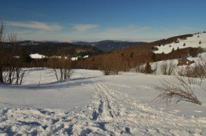 La Route des Crêtes près du Hohneck<br> Parc naturel régional des Ballons des Vosges
