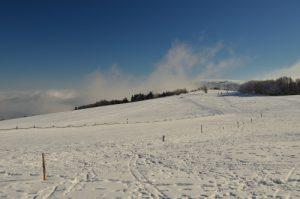 Paysage enneigés près de la Ferme des Trois Fours<br> Parc naturel régional des Ballons des Vosges