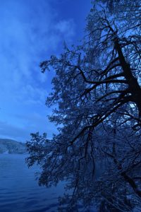 Le lac de Gerardmer<br> Parc naturel régional des Ballons des Vosges