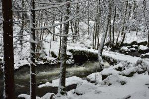 Le Saut des Cuves<br> Parc naturel régional des Ballons des Vosges