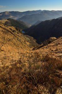 Le Hohneck, troisième sommet du massif des Vosges culmine à 1363m. <br> Parc Naturel Régional des Ballons des Vosges
