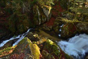 Petite Cascade de Tendon<br> Parc Naturel Régional des Ballons des Vosges