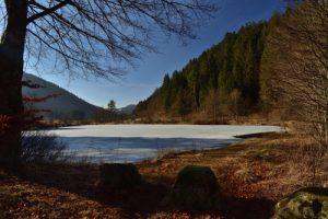 L'Etang des Dames à Rudlin<br> Parc Naturel Régional des Ballons des Vosges