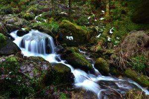 Ruisseau de la Cascade de Rudlin<br> Parc Naturel Régional des Ballons des Vosges