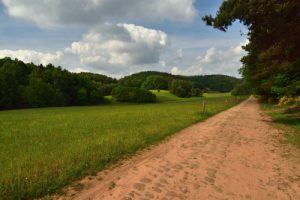 Voie romaine à Roppeviller<br> Parc Naturel Régional des Vosges du Nord
