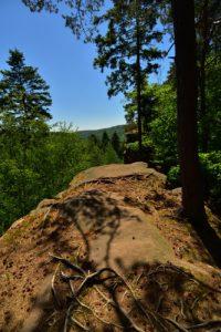 Circuit des 4 châteaux<br>Parc Naturel Régional des Vosges du Nord
