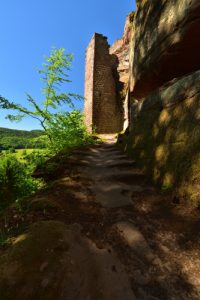 Château du petit Arnsberg<br> Parc Naturel Régional des Vosges du Nord