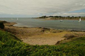 Entrée du port de Crouesty<br> Le Petit Mont<br>  Parc Naturel Régional du Golfe du Morbihan