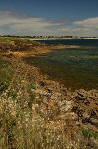 Le Petit Mont<br> Parc Naturel Régional du Golfe du Morbihan