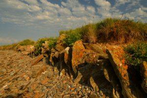 La Pointe de Penvins -  Le Golfe du Morbihan