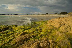 Plage de Govelins<br> Parc Naturel Régional du Golfe du Morbihan
