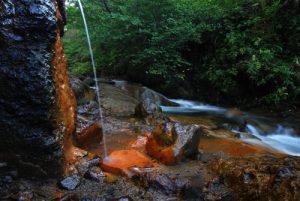 La source ferrugineuse de la vallée de Chaudefour Parc des Volcans d'Auvergne