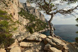 La Calanque des Pierres Tombées<br> Parc Naturel National des Calanques