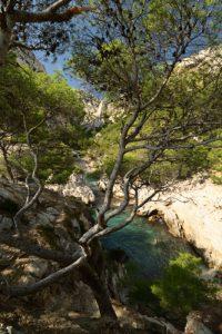 La Calanque de Sugiton<br> Parc Naturel National des Calanques