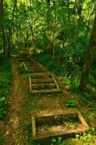 Parcours pédagogique  du Bois de la Barre -  Espace Naturel Sensible du Bois de la Barre