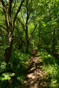 Parc Naturel du Pâtis