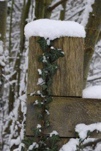 Vallée de La Brosse sous la neige<br>  Site classé de la vallée de La Brosse et de La Gondoire