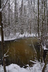 Mare sous la neige<br>  Site classé de la vallée de La Brosse et de La Gondoire