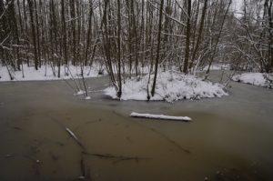 Mare gelée<br>  Site classé de la vallée de La Brosse et de La Gondoire