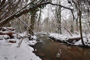 Vallée du Ru de la Brosse sous la neige<br>  Site classé de la vallée de La Brosse et de La Gondoire