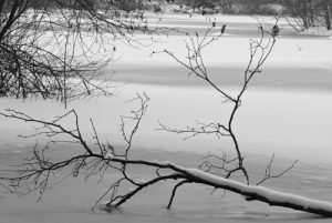 Étang de la Loy, gelé et sous la neige<br>  Site classé de la vallée de La Brosse et de La Gondoire