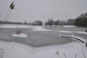 Etang de la Loy, gelé et sous la neige<br>  Site classé de la vallée de La Brosse et de La Gondoire