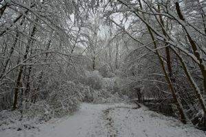 La Vallée de La Brosse sous la neige<br> Site classé de la vallée de La Brosse et de La Gondoire