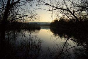 Réserve Naturelle Haff Réimech