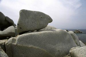 Îles Lavezzi<br> Réserve naturelle des Bouches de Bonifacio<br> Corse Sud Est