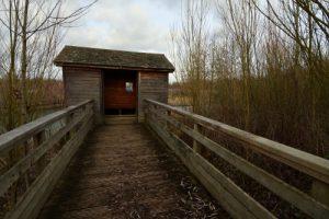 Observatoire ornithologique<br> Parc départemental de la Haute-Île