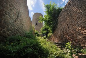 Le château du Pflixbourg (XIIIs.)<br> Parc Naturel Régional des Ballons des Vosges
