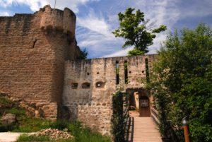 Château du Hohlandsbourg (XIIIs).<br> Parc Naturel Régional des Ballons des Vosges